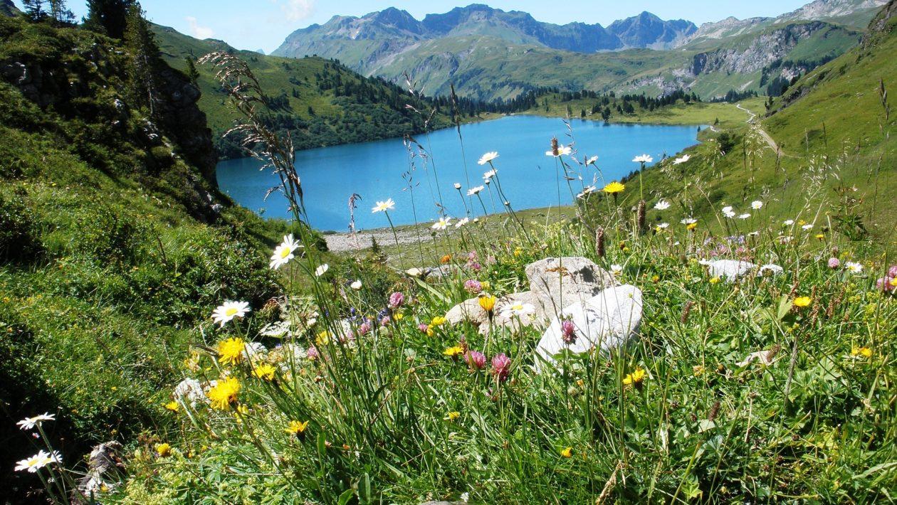 Engelberg Schweiz Landschaft